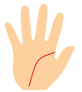 手首に向かって垂れ下がる知能線の手相