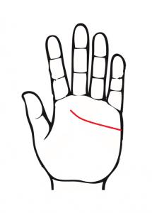 感情線、指に届かない、左手