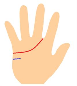 感情線が人差し指と中指の間と忍耐線の手相