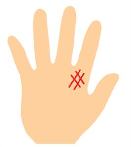 聖職紋の手相の画像