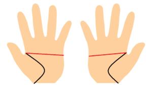 両手マスカケ線の手相