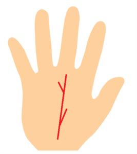 手相、運命線から枝分かれの線が伸びている