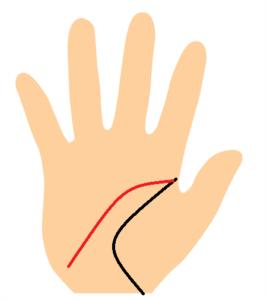知能線が手首に向かって垂れ下がる手相の画像