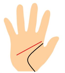 知能線が生命線から離れている手相画像