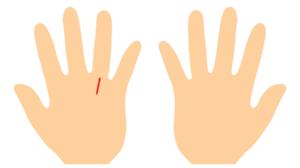 手相、太陽線が左手だけにある