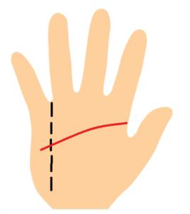 知能線が長く小指下まで伸びている手相の画像