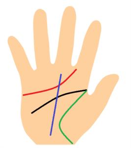 手相、知能線と感情線と生命線と運命線