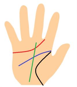 手相の主要線